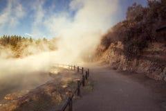 Гейзеры Waiotapu горячие Стоковое Изображение