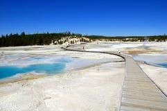 гейзеры yellowstone Стоковые Изображения RF