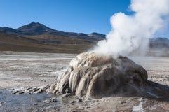 Гейзер в долине El Tatio - чилеански стоковая фотография