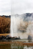 гейзер извержения Стоковые Изображения