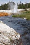 гейзер wy yellowstone Стоковая Фотография