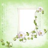 гениальная весна дождя рамки Стоковая Фотография