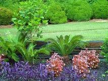Гениальное весеннее время в саде стоковое изображение