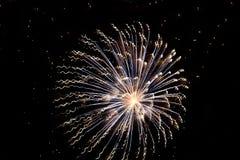 Гениальный дисплей Starburst фейерверков стоковые изображения