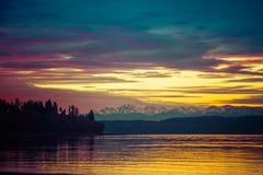 Гениальный заход солнца над Тихим океан северозападом с Evergreens в силуэте с желтыми и голубыми тонами стоковая фотография