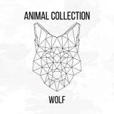Геометрическая голова волка Стоковые Фотографии RF
