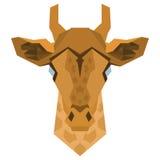 Геометрическая голова жирафа Стоковое фото RF