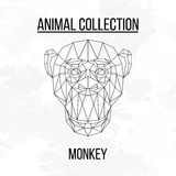 Геометрическая голова обезьяны Стоковое Изображение RF