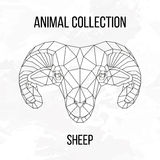 Геометрическая голова овец Стоковые Изображения