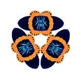 Геометрические формы изолята бабочки на белой предпосылке Стоковые Изображения