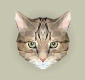 Геометрический низкий поли дизайн киски Иллюстрация логотипа вектора треугольника животного для пользы как печать на футболке и п Стоковое Изображение