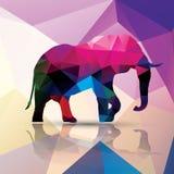 Геометрический полигональный слон, дизайн картины Стоковые Фото