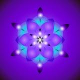 Геометрический цветок Стоковое Фото