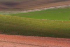 Геометрия полей стоковое фото