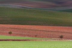 Геометрия полей стоковая фотография rf