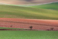 Геометрия полей стоковые изображения