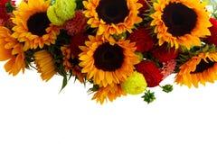 Георгин и солнцецветы стоковые фото