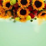Георгин и солнцецветы стоковое фото rf