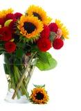 Георгин и солнцецветы стоковая фотография rf