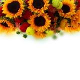 Георгин и солнцецветы стоковое изображение rf