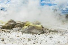 Геотермический район на Whakarewarewa Стоковое Изображение