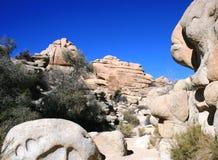 Геология отверстия вербы Стоковая Фотография RF