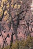 Геологохимическая сторона скалы исследования, pembrokeshire, вэльс Стоковые Фотографии RF