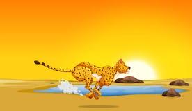 Гепард бежать в пустыне иллюстрация вектора