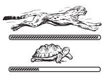 Гепард и черепаха иллюстрация вектора