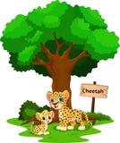 Гепард с его милым сыном бесплатная иллюстрация