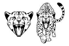 Гепард иллюстрация вектора
