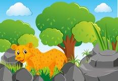 Гепард в лесе иллюстрация вектора