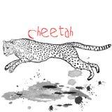 Гепард животный скачет с пятнами чернил иллюстрация вектора