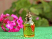 Гераниевое масло в стеклянной бутылке Стоковое Фото