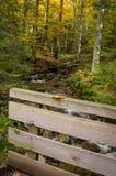 Германия, баварский лес Стоковая Фотография