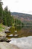 Германия, озеро Arbersee Стоковое Изображение RF