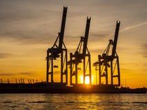 Германия hamburg Порт, контейнеровозы и краны стоковое фото
