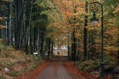 ГЕРМАНИЯ, Hohenschwangau Стоковая Фотография