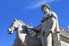 герой его лошадь стоковые изображения rf