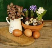 гиацинт цветет весна пасхи конца-вверх таблицы кувшина глиняного горшка яичек деревянная Стоковое фото RF