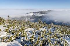 Гигантские горы в зиме, чехия Стоковые Фотографии RF