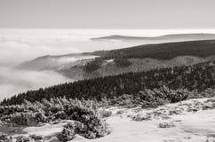 Гигантские горы в зиме, чехия Стоковые Фото
