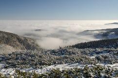 Гигантские горы в зиме 3, чехия Стоковая Фотография