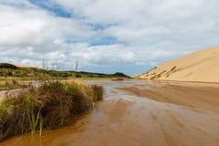 Гигантские песчанные дюны на Te-Paki на пляже 90 миль стоковое изображение