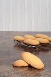 Гигантские печенья пальца дамы Стоковая Фотография RF