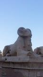 Гигантские статуи в древнем храме Стоковая Фотография