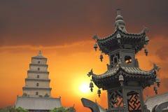 гигантский заход солнца pagoda гусыни одичалый Стоковая Фотография RF