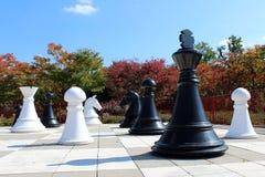 Гигантский земной шахмат стоковая фотография