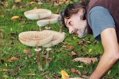 гигантский зонтик парасоля гриба Стоковая Фотография