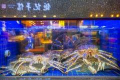 Гигантский краб в танке для продажи в китайском ресторане Стоковые Изображения RF